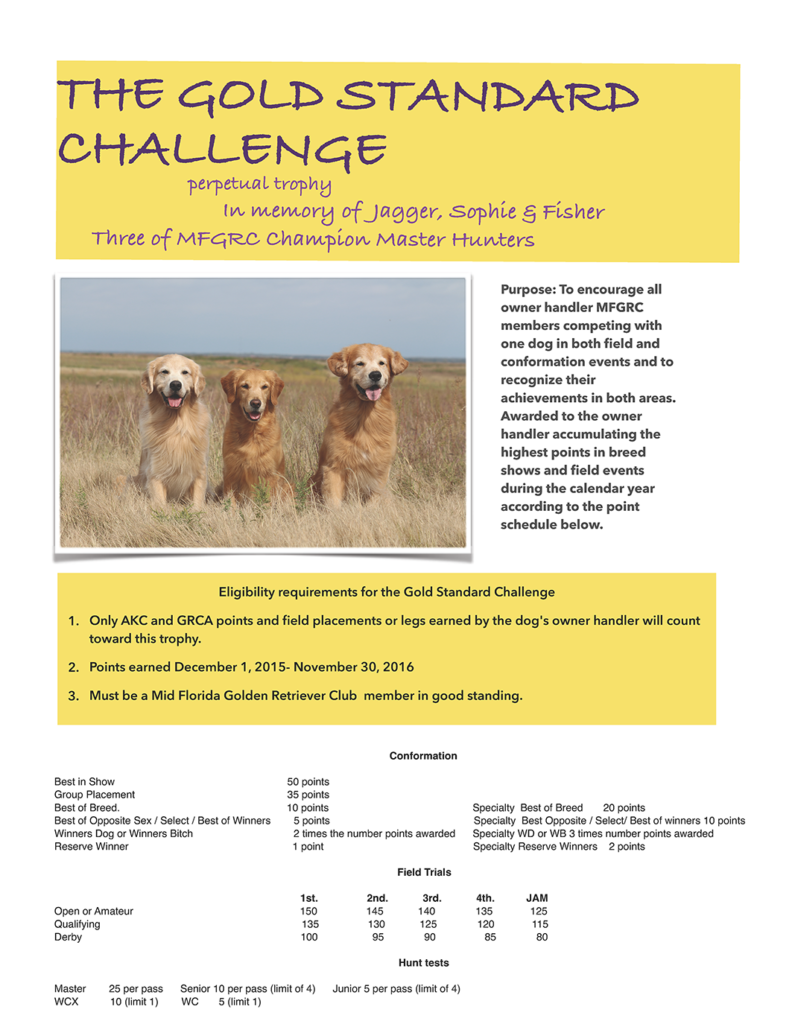 GOLD STANDARD CHALLENGE 2016-small